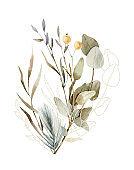 Watercolor hand painted composition - arrangement, bouquet. Soft gentle color palette