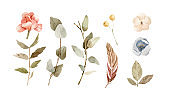 Set of hand painted watercolor flowers in soft green colors