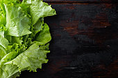 Raw organic green oak lettuce, on dark wooden background with copy space for text