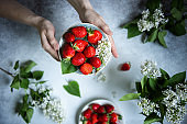 Plate of big red ripe strawberries in human hands