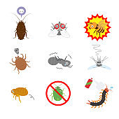 Insect pest set