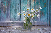 Charming still life with copy space chamomilles and daisies in water on wood background