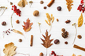 Autumn leaves, berries, acorns, walnuts, cinnamon and anise on white background. Autumnal pattern with natural forest details, flat lay. Hello Fall