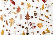 Autumn flat lay. Fall leaves, berries, acorns, walnuts, cinnamon,anise , cotton and pine cones on white background. Autumnal pattern with nature forest details