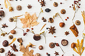 Autumn flat lay. Fall leaves, berries, acorns, nuts,anise, chestnut and flowers on white background. Autumnal pattern with nature garden details