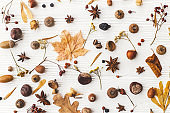 Autumn flat lay. Fall leaves, berries, acorns, nuts,anise, chestnut and flowers on white background. Autumnal pattern with nature forest details