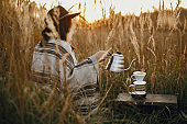 Hipster woman in hat pouring hot water into coffee in filter in pour over on glass flask on background of sunny warm light in rural herbs. Alternative coffee brewing in travel.