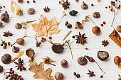 Autumnal pattern with nature garden details, flat lay. Autumn leaves, berries, acorns, nuts,anise, chestnut and flowers on white background. Hello Fall
