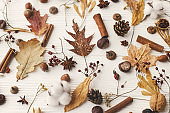 Autumnal pattern with natural forest details. Autumn leaves, berries, acorns, walnuts, cinnamon,anise , cotton and pine cones on white background. Hello fall