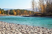 turquoise Katun river in the Altai mountains on a sunny day, a rocky shore made of smooth pebbles