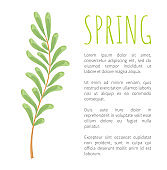 Spring and Twig with Tiny Oblong Leaves Poster