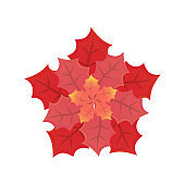 Leaves of Different Size and Red Shades Vector