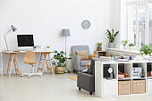 Modern living room in the house