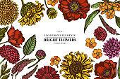 Floral design with colored poppy flower, gerbera, sunflower, milkweed, dahlia, veronica