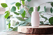 Cosmetic bottle with green leaves of eucalyptus.