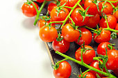 Covered with drops of water, fresh tomatoes with sprigs on wood