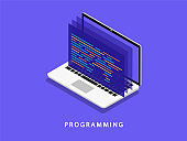 Programming on a laptop in isometry. Software development. Coding. Vector illustration.