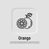 Orange thin line icon. Symbol for juice. Whole and half. Healthy organic food. Vector illustration.