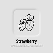 Strawberry thin line icon. Berries. Healthy organic food. Vector illustration.