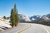 Empty road in Yosemite National Park, California, USA
