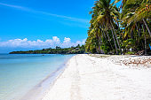 White beach and turquoise blue sea landscape. Tropical nature with palm trees. Idyllic place for summer vacation