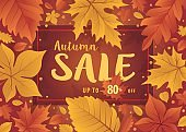 Hello autumn season design. Autumn background with fall leaves. Autumn Sale template with leaf