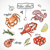 Watercolor set with seafood, oysters, crab, shrimp, lemon and herbs and spices. Hand-drawn on a white background.