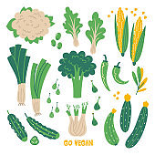 Flat set hand drawn healthy food. Illustration of Green vegetables. Organic farm products in sketch style. Isolated scandinavian items. Farm market, restaurant menu design, banner, cookbook page.