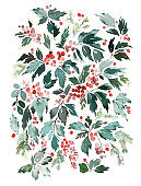 Watercolor christmas illustration with branches of berries and leaves