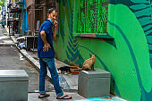 A man communicates with a homeless cat on the street. Homeless animals on a city street