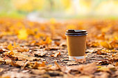 Walk with a cup of hot cocoa in the autumn park. Craft cup of coffee on the road with yellow fallen leaves