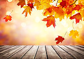 Autumn golden abstract background with bokeh light and colorful leaves.