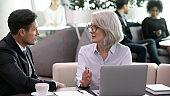 Mature businesswoman explaining online project to business partner