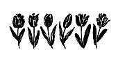 Collection of hand drawn graphic tulips. Floral clip art elements. Branches, leaves and buds.