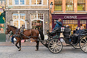 Bellfry and City Hall at Market Square in Bruges with Fiaker with brown horse waiting for tourists in popular belgian destination Brugge Tour of the center of Bruges