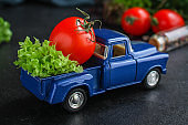 healthy salad - lettuce leaves, tomatoes, vegetables (vitamins ingredients. toy car) menu concept. food background. top view. copy space