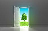 Open Classic Door