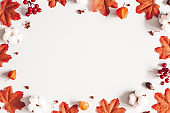 Autumn composition. Frame made of flowers, maple leaves on gray background. Autumn, fall, thanksgiving day concept. Flat lay, top view