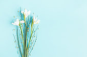 Flowers composition. Spring flowers on blue background. Flat lay, top view