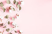 Flowers composition. Cotton flowers, eucalyptus branches on pink background. Flat lay, top view