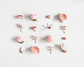 Flowers composition. White and pink flowers on pastel gray background. Flat lay, top view