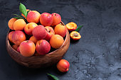 Ripe apricots on black background. Top view, copy space. Fruit banner. Healthy vegetarian food, detox or diet concept. Fruit summer concept. Bowl of harvested apricots for jam