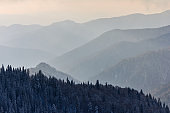 Snowy winter landscape of mountains. Coniferous forest in the hoarfrost. View of layers of mountain and haze in the hills at distance. Season of the winter.