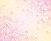 Cherry blossom gradient background