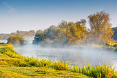 Fantastic foggy river with fresh green grass in the sunny beams.
