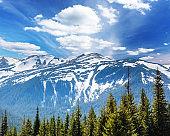 Fantastic sunny day is in mountain landscape. National park Chornogora. Carpathian, Ukraine, Europe.