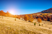Majestic colorful landscape with sunny beams at mountain valley.