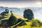 Beautiful sunny day is in mountain landscape. Carpathian, Ukraine, Europe.