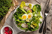 Spring salad with freshly grown microgreens and wild edible plants - chickweed and daisies