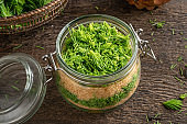 A jar filled with young spruce tips and cane sugar, to prepare herbal syrup